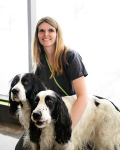 St David's Veterinary Clinic